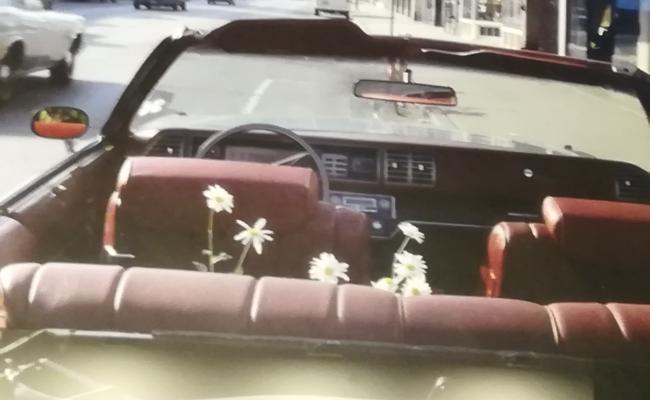 (Italiano) Vivian Maier. La fotografa ritrovata – in mostra a Bologna
